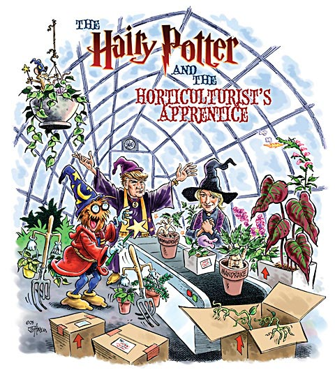 Potter And The Horticulturist S Ice